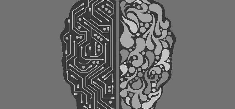 Un nouveau cerveau pour un nouveau job ?